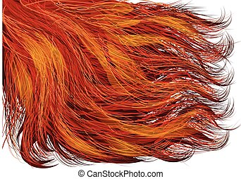 red hair isolated on a white background