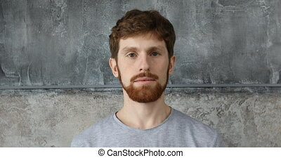 Red-haired bearded guy on a gray background - Red-haired...