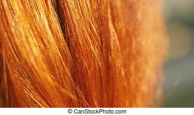 Red haired woman closeup. Portrait young woman with red hair...