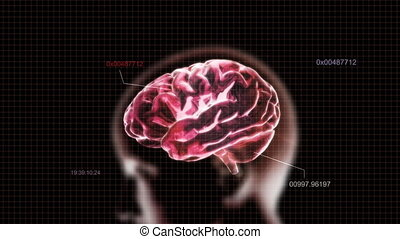 red head brain with code