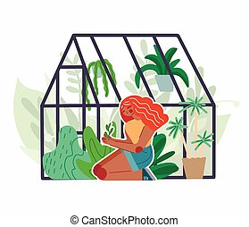 Red head girl care for home greenhouse with various plants. ...