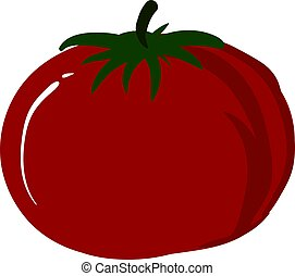 Red healthy tomato, illustration, vector on white background.
