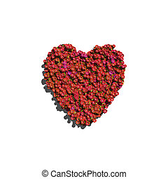 red heart create by flowers white background