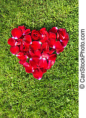 Red heart from rose petals on grass.