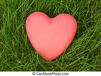 Red heart lying on green grass - The red heart lying on...