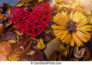 Red heart on a background of dried flowers. Valentine's day or wedding
