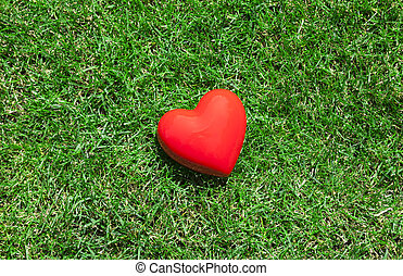 Red heart on green grass