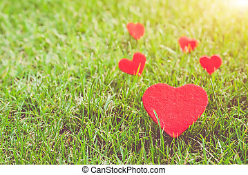 red heart on the green grass backgrounds with copy space