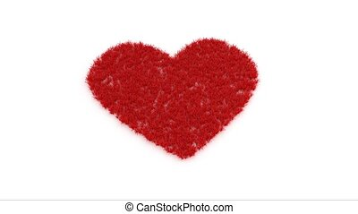 Red heart shape on white - Animated red heart shape of grass...