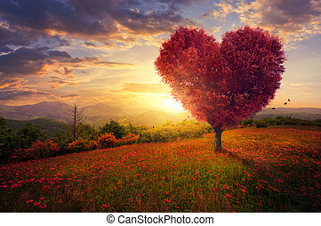 A red heart shaped tree at sunset.