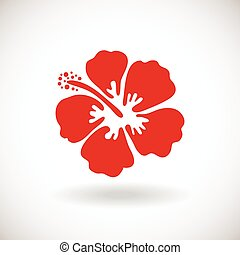 Red Hibiscus flower on white backgr