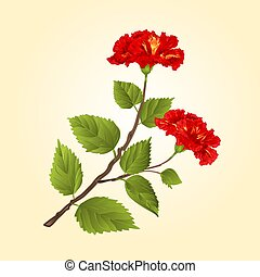 Red hibiscus tropical flower vector.eps