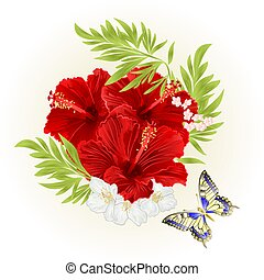 Red hibiscus with jasmine flowers and butterfly vintage vector