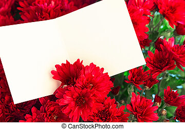 red holiday flowers with copy space