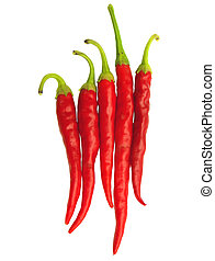 red hot chili pepper - isolated chili peppers