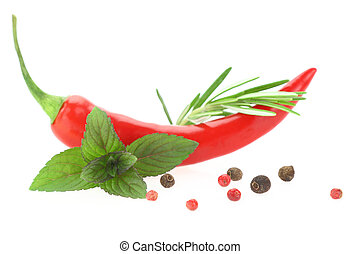 Red hot chili pepper with mint leaves and rosemary