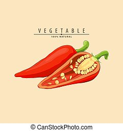 hot chilli pepper - Red hot chilli pepper illustration