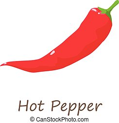 Red hot pepper icon, isometric style - Red hot pepper icon....