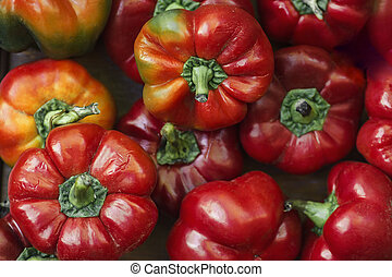 red hot pepper round shape natural background