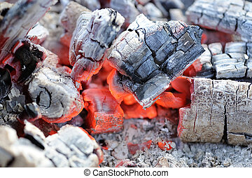 Red Hot Wood Embers Close-Up