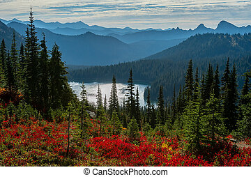 Red Huckleberry and Pine Trees in Front of Dewey Lake