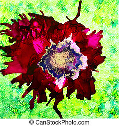 Red Ink Poppy