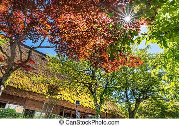 Red Japanese Garden