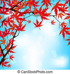Red Japanese Maple leaves against blue sky. EPS 8