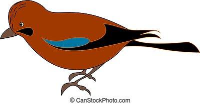 Red jay bird, illustration, vector on white background.