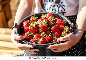 Red juicy fresh strawberries closeup in a basket