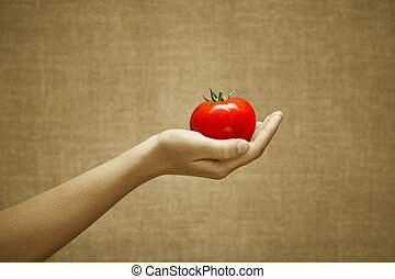 Red juicy tomato in female hand