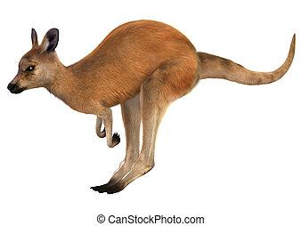 Red Kangaroo - 3D digital render of a jumping red kangaroo...