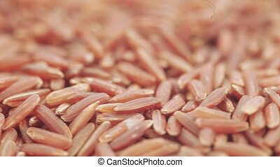 Red Kernel Rice in bulk - Rice Rubin premium quality in bulk