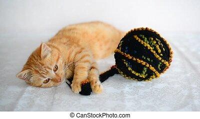 Red kitten lies near tangle with woolen knitting threads - A...