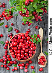 Red lingonberry in wooden bowl