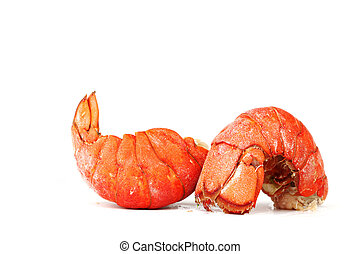 red lobster tail close up