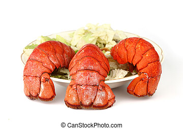lobster tail - red lobster tail close up