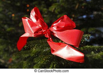 Red Loop on a Christmas Tree
