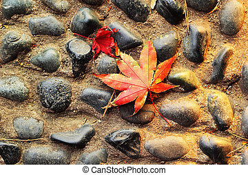 Red maple leaves on a stone floor.