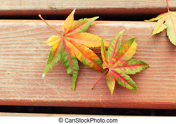Red maple leaves on a wood floor.