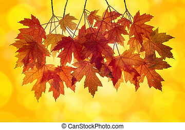 Red Maple Leaves with Orange Background