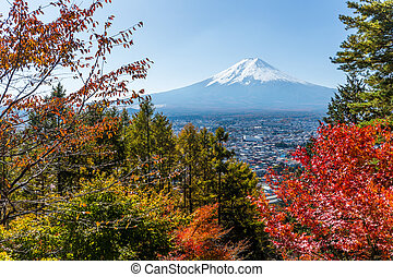 Red maple tree and mountain Fuji
