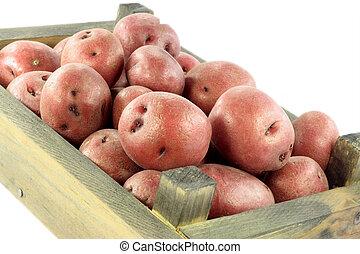 Red mini potatoes in crat
