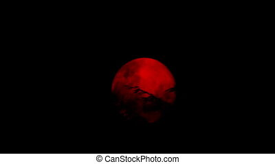 Red Moon Behind The Trees - Large red moon moves behind...