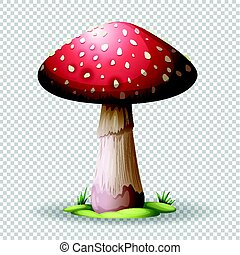 Red mushroom on transparent background illustration