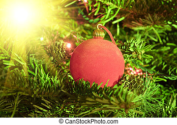 Red New Year's ball on fir tree branches