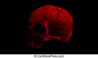 Red Old Skull Rotating Slowly Loop