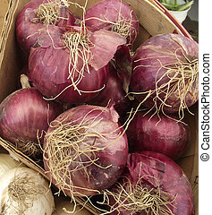 Red onions in a barrel