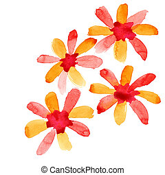 Red-orange watercolor flowers isolated over the white ...