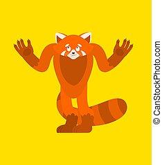Red panda confused. Wild animal is perplexed emotions. Beast...
